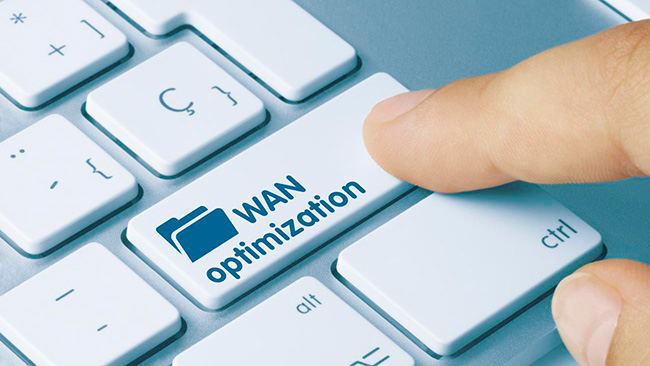 CITRIX WORKSPACE optimized wan lean-on